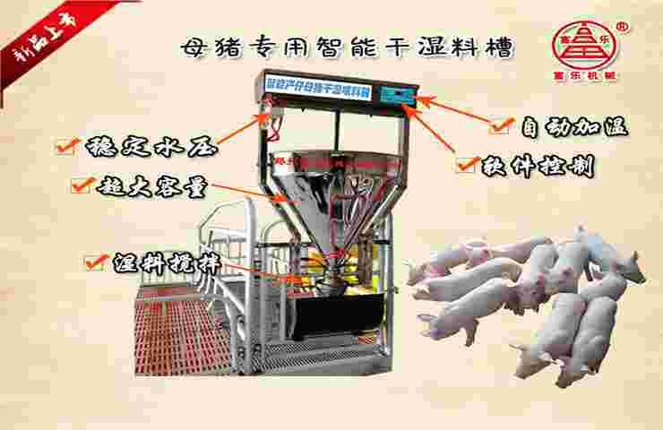 产床母猪专用智能干湿粥料料槽